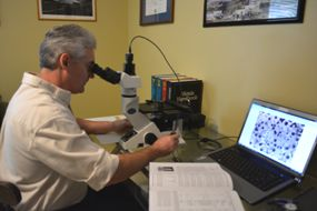 Dr Carney At The Metal Microscope
